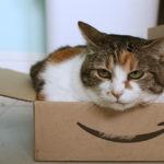 Amazonプライム年会費1000円 月会費100円の値上げ!
