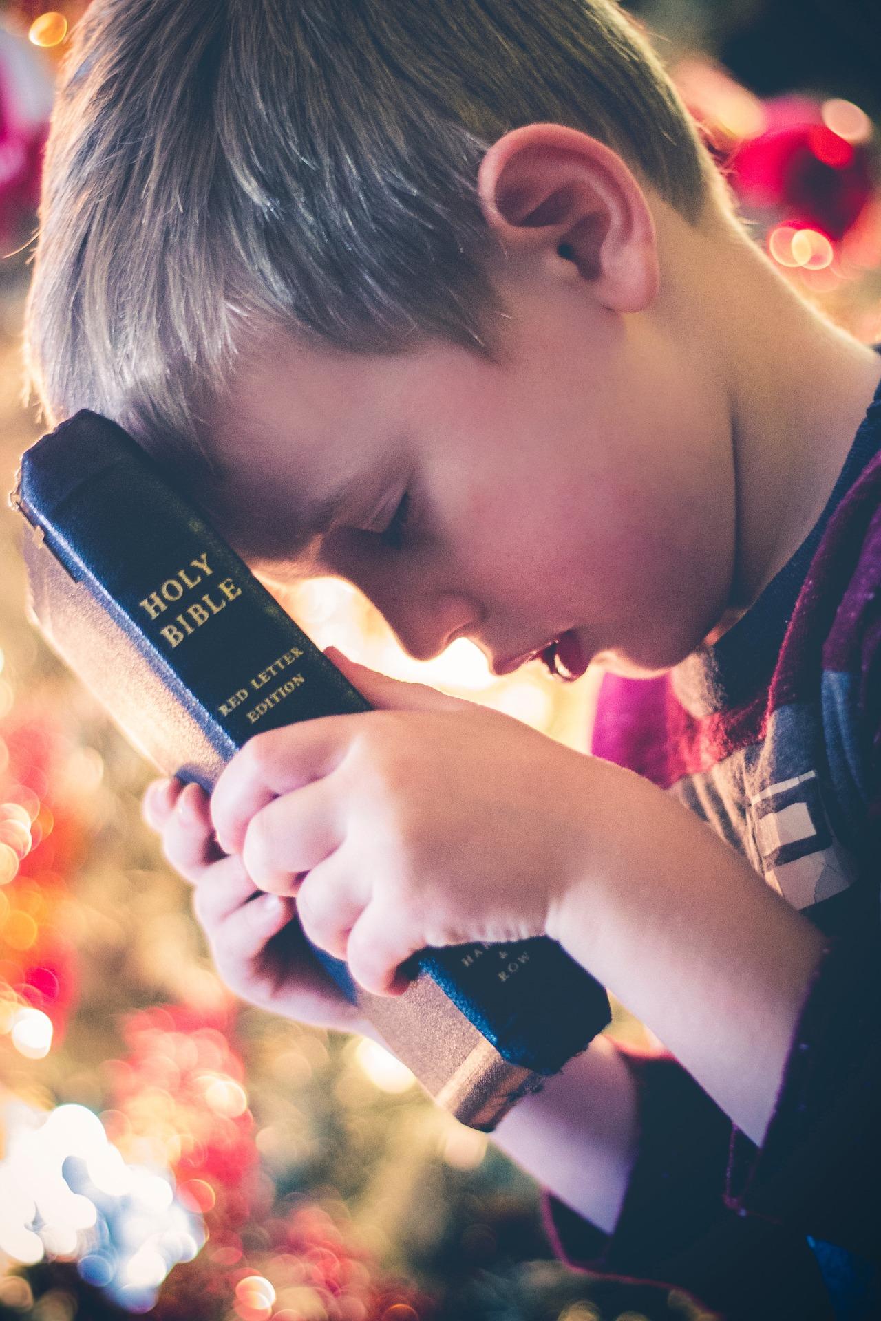 本に額を付ける男の子